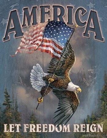 America Let Freetdom Reign – Retro Skylt