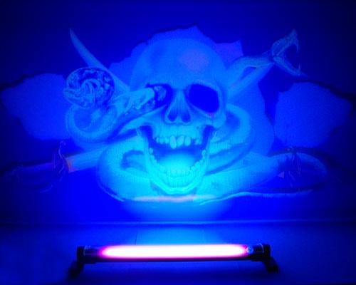 FX motiv Skull Bilstyling