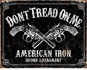 DTOM American Iron Second Amendment  - Retro Skylt
