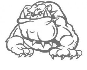 Bulldog Silver Full - Dekal