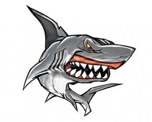 Shark II Dekal - 11x10
