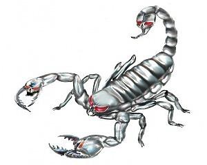 Silver Scorpion - 11x10