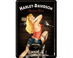 Vykort Harley Davidson - Biker Babe