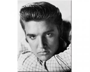 Magnet Elvis